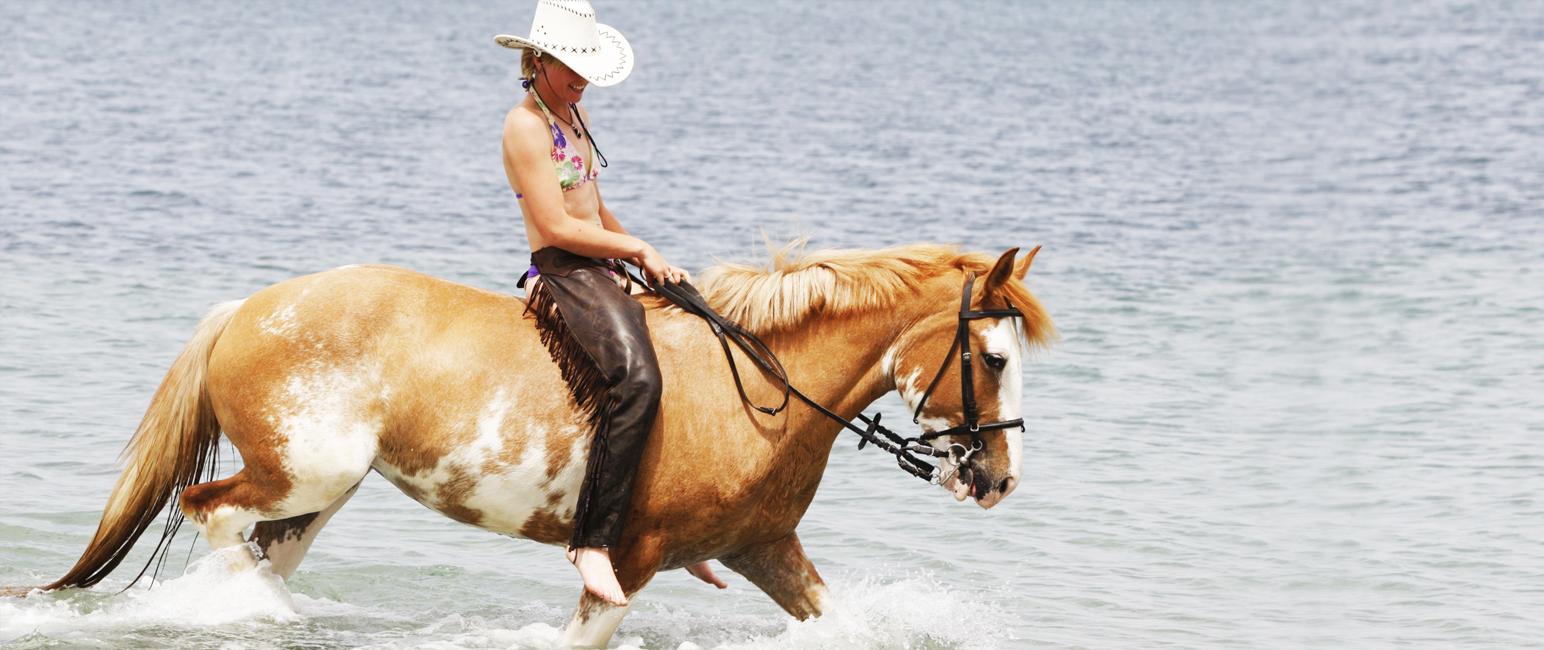 Una settimana, un cavallo.