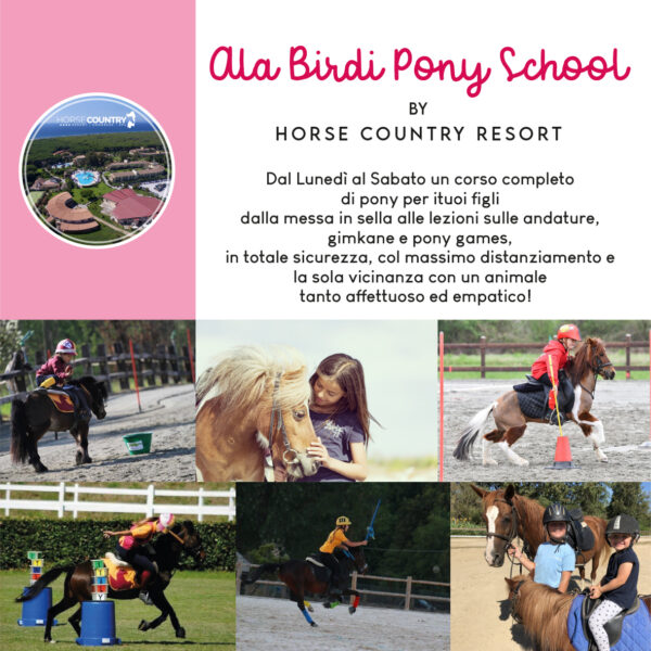 ala birdi pony school